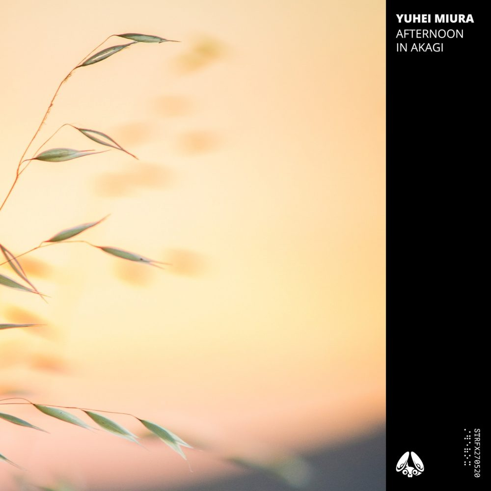 yuhei miura - Afternoon in Akagi EP - artwork - small