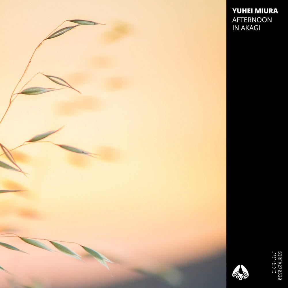 yuhei miura - Afternoon in Akagi EP - artwork - small