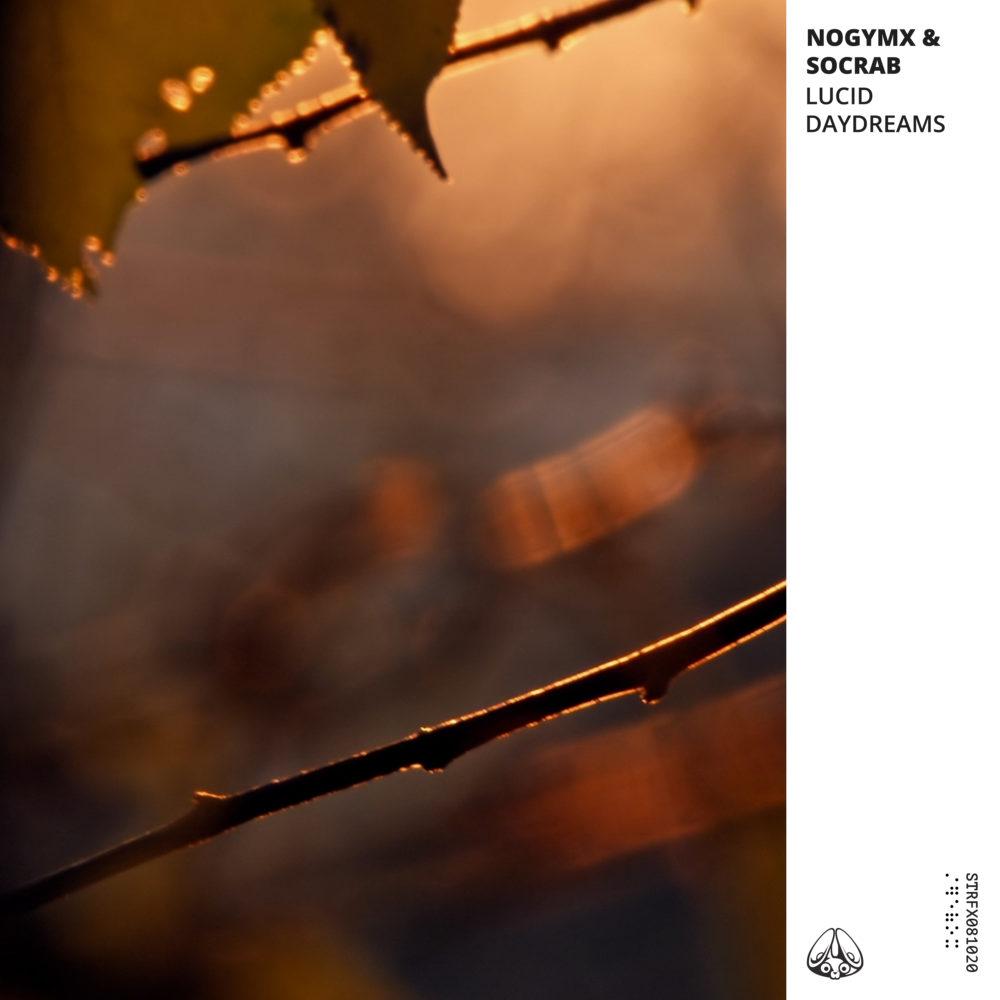 Nogymx & Socrab - Lucid Daydreams Album Artwork
