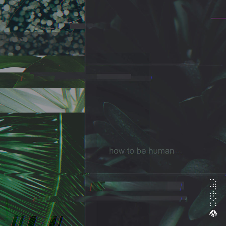 MÒZÂMBÎQÚE - How to Be Human (Deluxe) resized