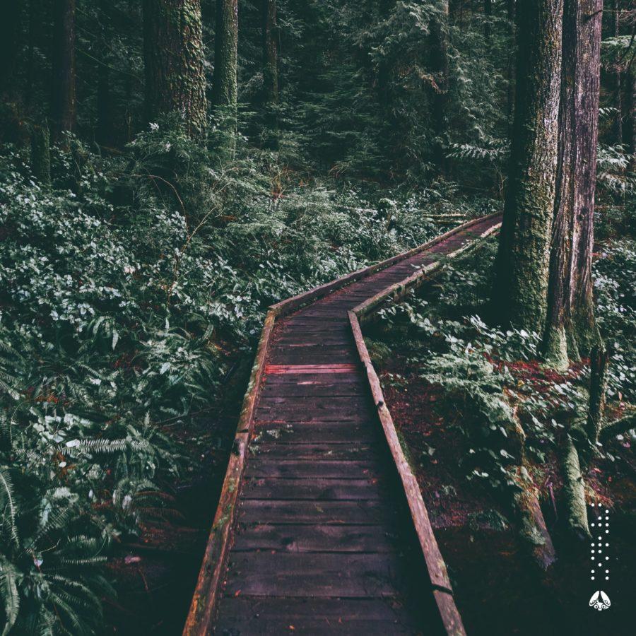 kyoshi - Haven EP Artwork