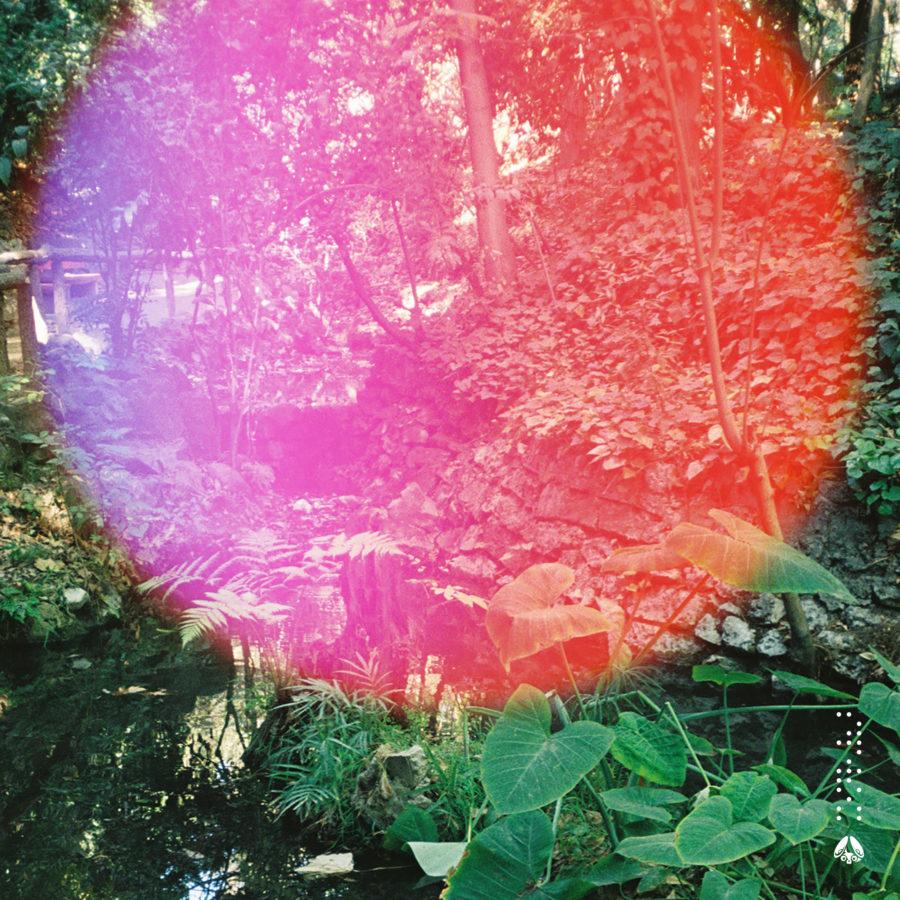 Joe Nora - Rainfall EP